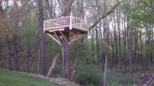 the tree house building project is finished.