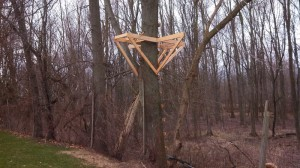 Tree House Building Base framing with support braces