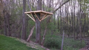 Tree House Building - Floor base with corner support braces